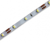 LEDware | LED Strip 5mm | 300 LED's | Blauw | 5M | 24V